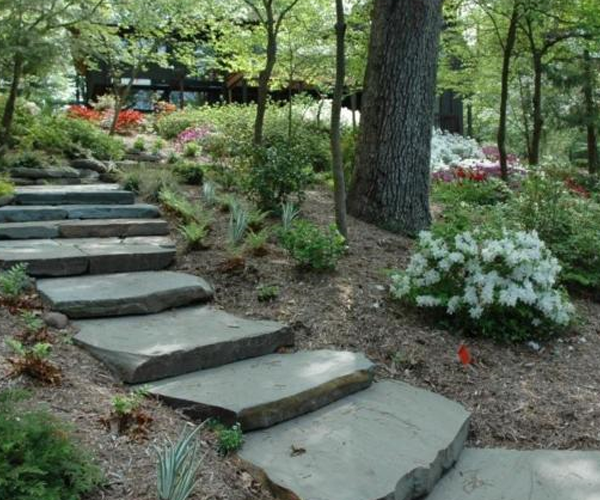 Rugged stone steps in a landscape